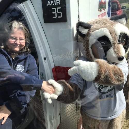 Rocky Raccoon shaking lady's hand
