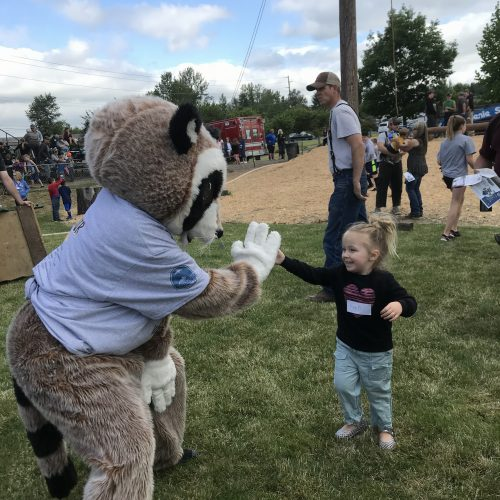 Rocky Raccoon high fiving little girl