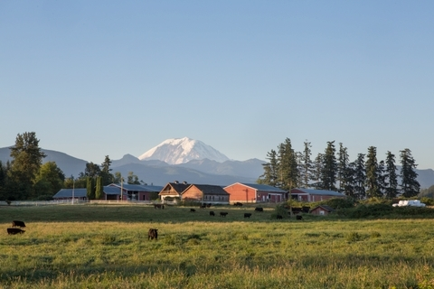 Mt Rainier and barn